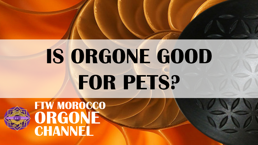 Is orgonite good for my pets?